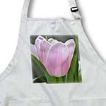 click on Perfectly Pink Tulip Flower - Floral Photography to enlarge!