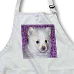 click on White And Cream Pomeranian Puppy to enlarge!