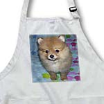 click on Orange Pomeranian Puppy to enlarge!