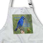 click on State Bird Of Nevada Mountain Bluebird to enlarge!