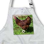 click on State Bird Of Rhode Island Red Chicken to enlarge!
