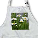click on iLove Spring - White Daisies - Flowers - Photography to enlarge!