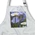 click on Sweet Daisy - White Flowers - Floral Photography - Spring to enlarge!
