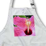 click on Pink Hibiscus Flower - Floral Art to enlarge!