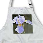 click on Purple Iris Flower - Spring Photography to enlarge!
