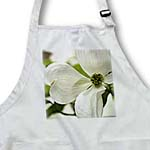 click on Purity - White Dogwood Flower - Spring Flowering Trees to enlarge!