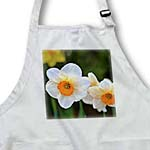 click on Spring Floral - White and Orange Daffodils - Photography to enlarge!