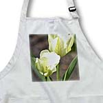 click on White Tulip Flowers - Spring Photography to enlarge!