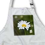 click on Saying Hello To Spring Daisy - White Flowers - Spring Photography to enlarge!