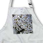 click on Pretty White Flowers - Flowering Tree - Spring Photography to enlarge!