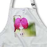 click on Bleeding Heart Flower - Pink Floral Photography - Spring to enlarge!
