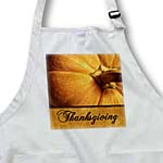 click on Thanksgiving Pumpkin in Golds to enlarge!