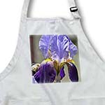 click on Pretty Purple Iris - Flowers - Spring Photography to enlarge!