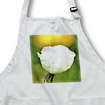 click on White Iceland Poppy Flower - Floral Photography to enlarge!