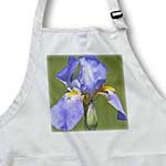 click on Beautiful Lavender Iris Flower - Spring Photography - Floral Prints to enlarge!