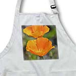click on Pretty Orange California Poppy Flowers - Floral Print - Photography to enlarge!