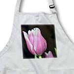 click on Beautiful Pink Garden Tulip to enlarge!