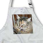click on Beautiful Painted Maine Coon Cat to enlarge!