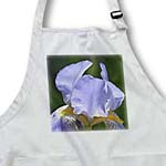 click on Pretty Lavender Iris Flower - Floral Print - Spring to enlarge!