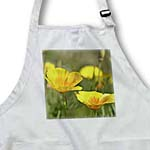 click on Orange Poppies in Spring - Flowers - Floral Print to enlarge!