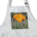 click on Open to Spring - Orange Poppy Flower - Floral Print to enlarge!