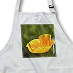 click on Orange Poppy Spring Flower - Floral Print - Photography to enlarge!