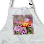click on Spring Iceland Poppy - Orange Flowers - Floral Print to enlarge!