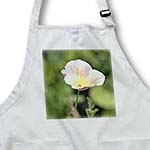 click on Light Pink Poppy Flower - Floral Print - Spring to enlarge!