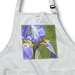 click on Beauty of Lavender - Spring Iris Flowers - Floral Print to enlarge!