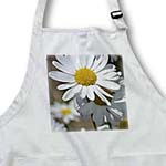 click on White Daisy Flower - Spring Floral Print - Photography to enlarge!