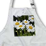 click on Daisy Garden - Spring Flowers - Floral Print to enlarge!