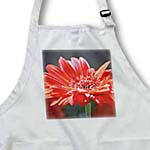 click on Spring Red Gerbera Flower - Floral Print to enlarge!
