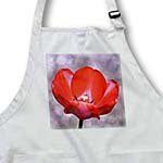click on Pretty Red Tulip Flower - Floral Print - Spring to enlarge!