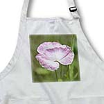 click on Pretty Light Pink Iceland Poppy Flower - Spring - Floral Print to enlarge!