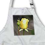 click on Yellow Rose and Bud - Floral Print - Spring Flowers to enlarge!