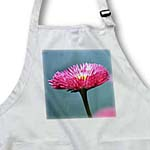click on One English Daisy - Pink Flowers - Floral Print to enlarge!