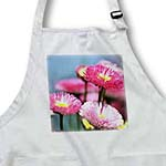 click on English Daisies - Floral Print - Spring Flowers to enlarge!