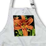 click on Garden Tiger Lily to enlarge!