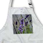 click on Garden Lavender Flowers to enlarge!