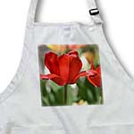 click on Red Tulip Flower - Floral Print - Photography to enlarge!