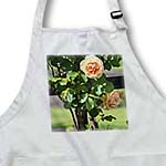 click on Peach Roses in a Spring Garden - Flowers - Floral Print to enlarge!