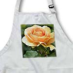 click on Perfectly Peach - Romantic Rose Flower - Floral Print to enlarge!