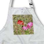 click on Pretty Poppy Garden - Flowers - Floral Print to enlarge!