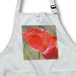 click on The Beauty of Red - Poppy Flower - Floral Print to enlarge!