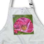 click on Poppy Floral Print - Pink Flowers - Spring Photography to enlarge!