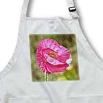 click on Pink Spring Poppy Flower - Floral Print - Photography to enlarge!