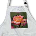 click on Beautiful Colors Spring Rose - Flowers - Floral Print to enlarge!