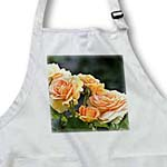 click on Romantic Peach Rose Garden - Flowers - Floral Print to enlarge!