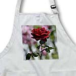 click on Red Rose Romantic Garden - Flowers - Floral Print to enlarge!