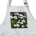 click on Daisy Garden - Floral Print - Flowers to enlarge!